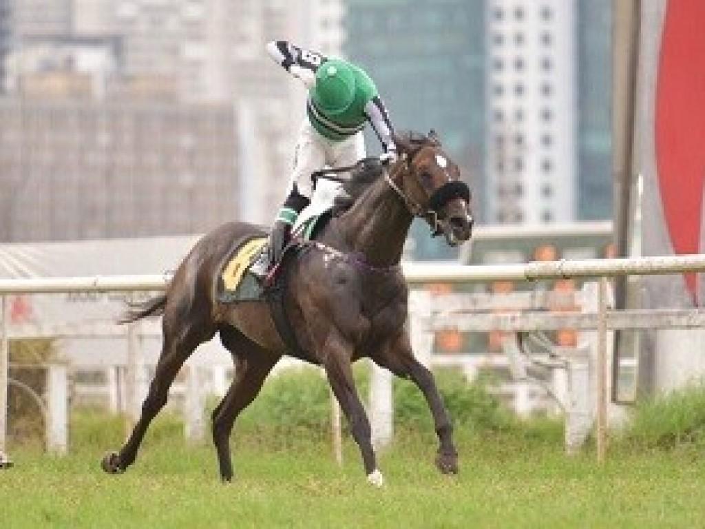Derby Day em Curitiba aproveitará páreos cancelados da última sexta-feira