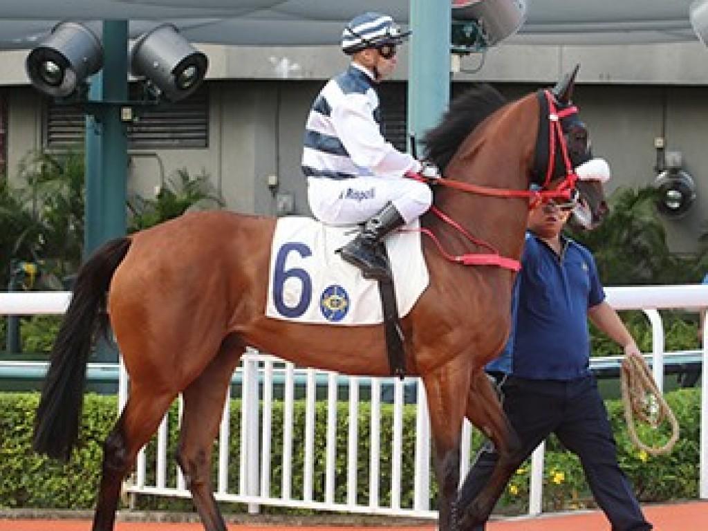 Hong Kong: na segunda tentativa, Cash do Jaguarete entra quinto