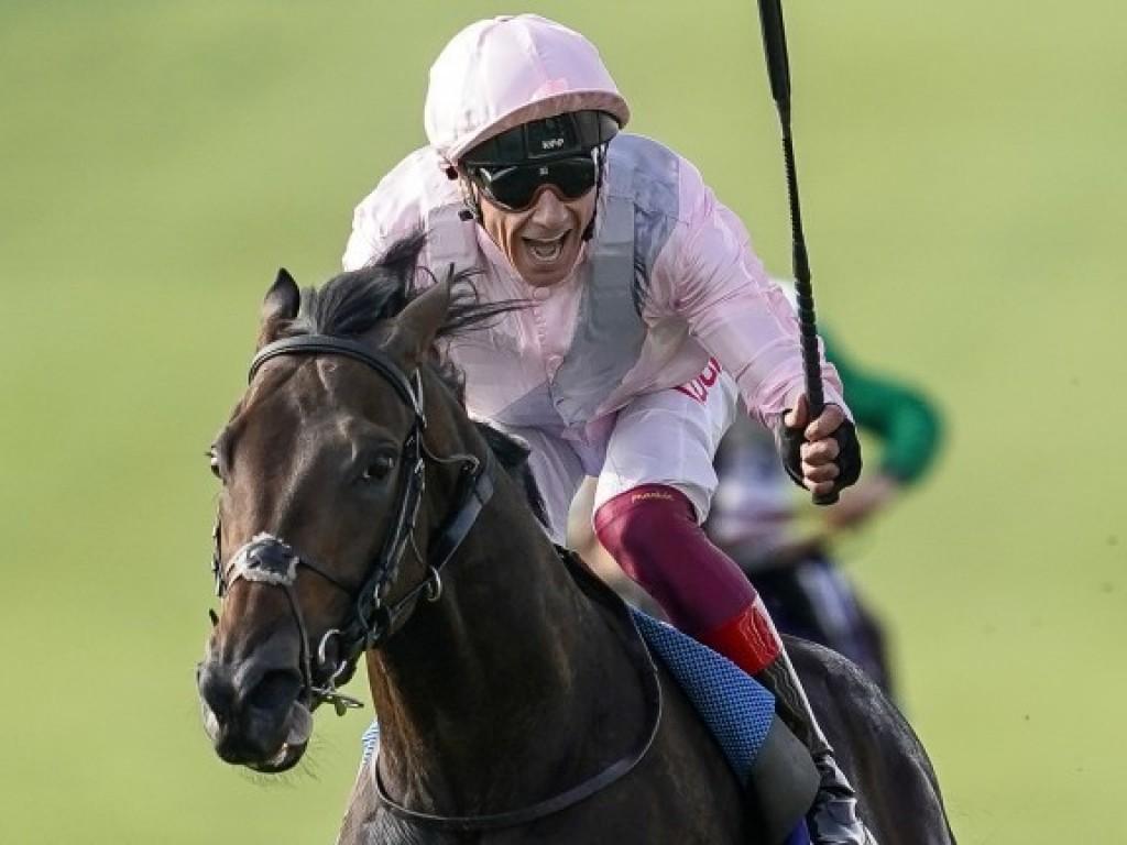 Nova sensação europeia, Too Darn Hot brilha no Dewhurst Stakes (gr.I)
