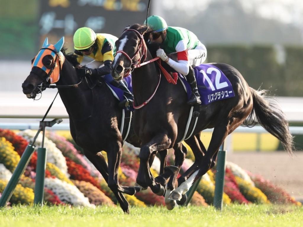 Moreira volta ao Japão para vencer G1 com Lys Gracieux
