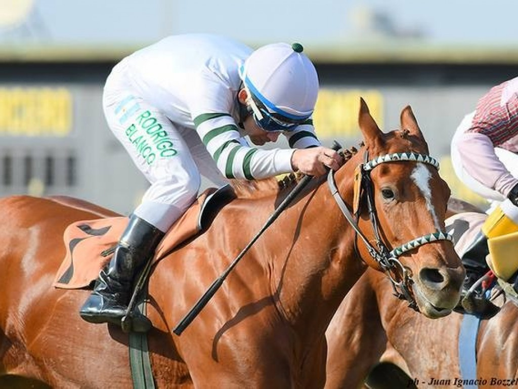 Argentina: Global Beauty supera Mirta na Copa de Plata (gr.I)