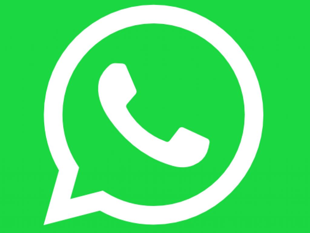 Stud Book informa: números de WhatsApp das agências regionais