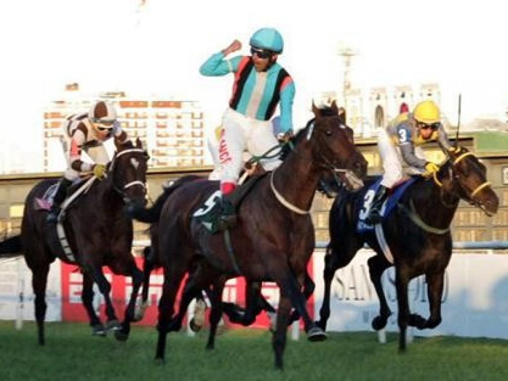 """He Runs Away é eleito """"cavalo do ano"""" na Argentina; Francisco Leandro é o melhor jóquei"""