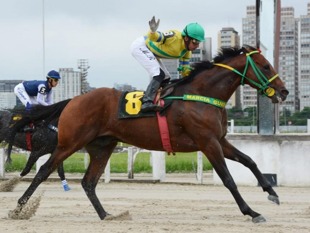 Ouro da Serra aprova raia de areia e vence o GP Piratininga (gr.III)