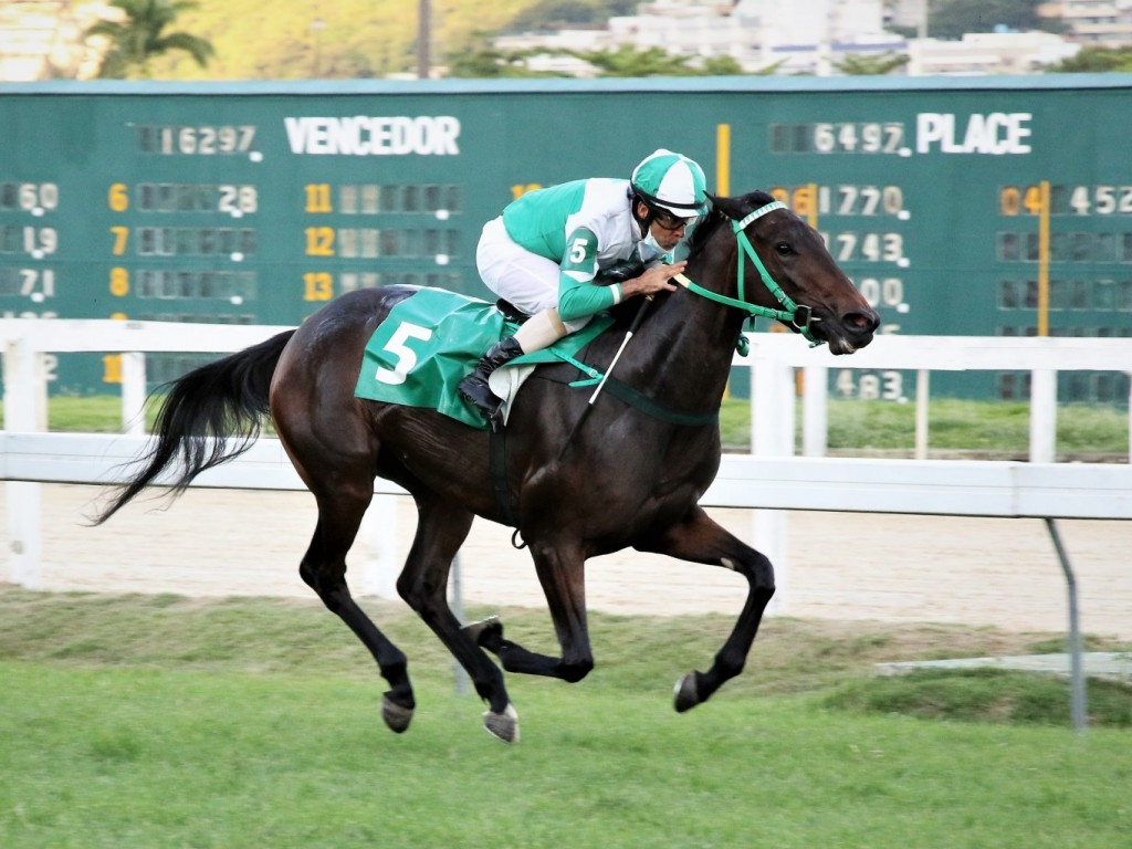 Regal Tight assume a liderança no GP Luiz Fernando Cirne Lima (G3)