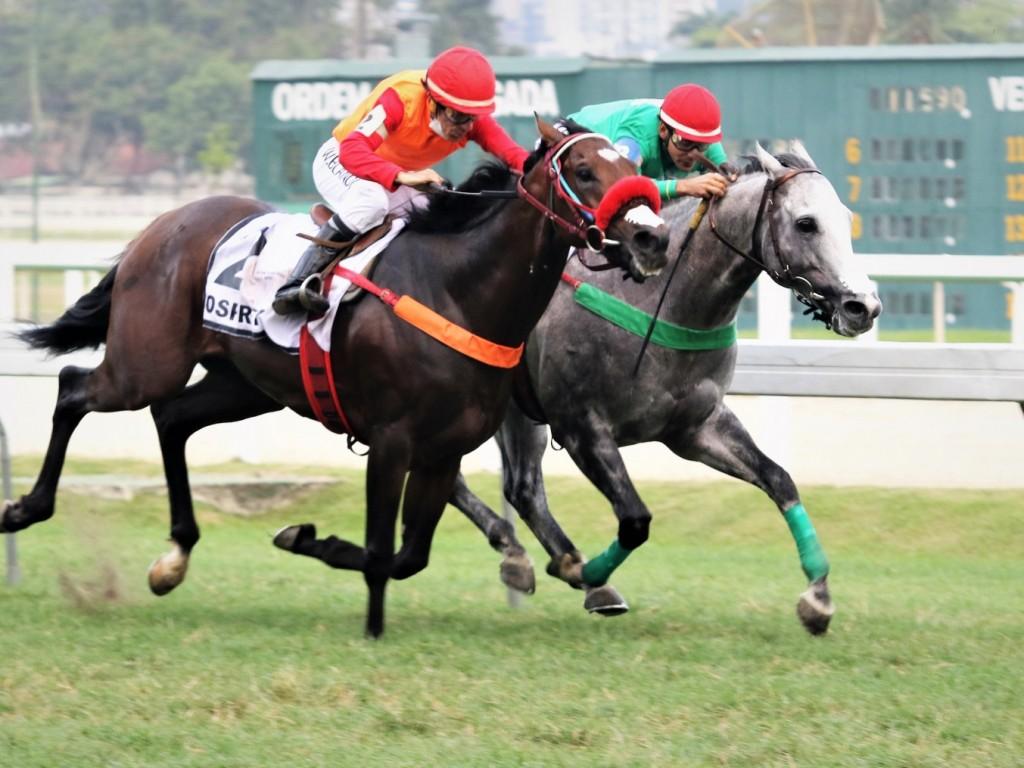 Foto: Mem Cade Ce e Osprey: empate no GP João Borges Filho (G2)